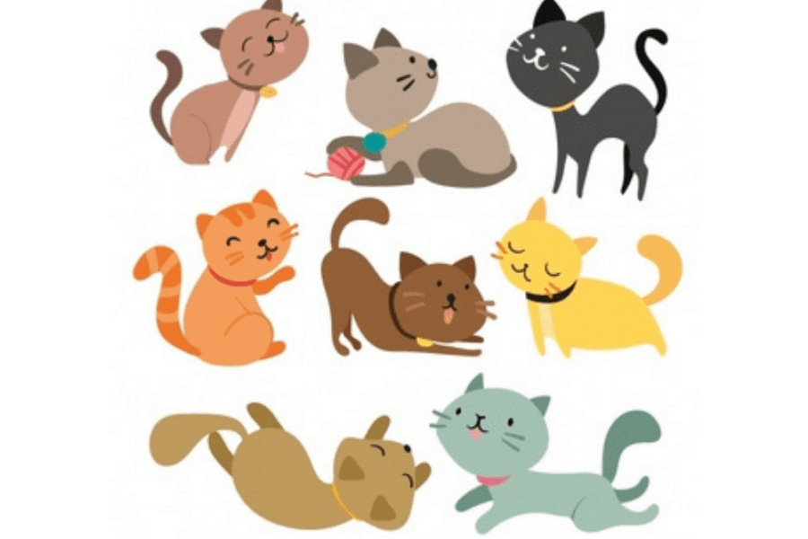 Cat Age Calculator [Cat Years Calculator ]